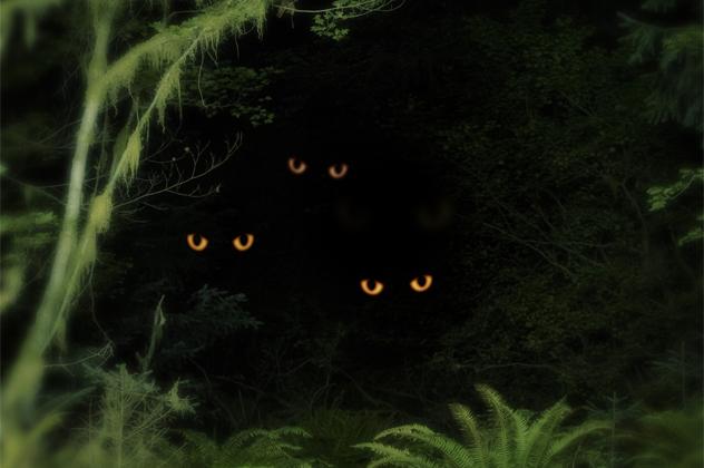 Anões canibais olhos amarelo escuro
