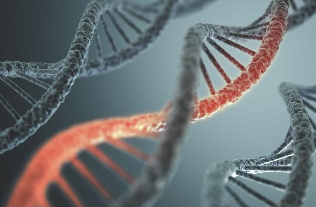 Radiação DNA
