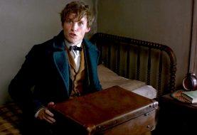 Newt Scamander, de Animais Fantásticos, já apareceu em Harry Potter