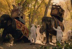 Peta critica HBO pelo uso de elefantes em Westworld