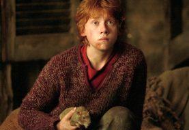 Ator de Rony Weasley diz que filmar Harry Potter foi um 'sacrifício'