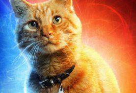 Gatos que 'interpretaram' Goose em Capitã Marvel odiaram os Skrulls