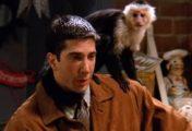 Friends: David Schwimmer, o Ross, não gostava de gravar com o macaco Marcel