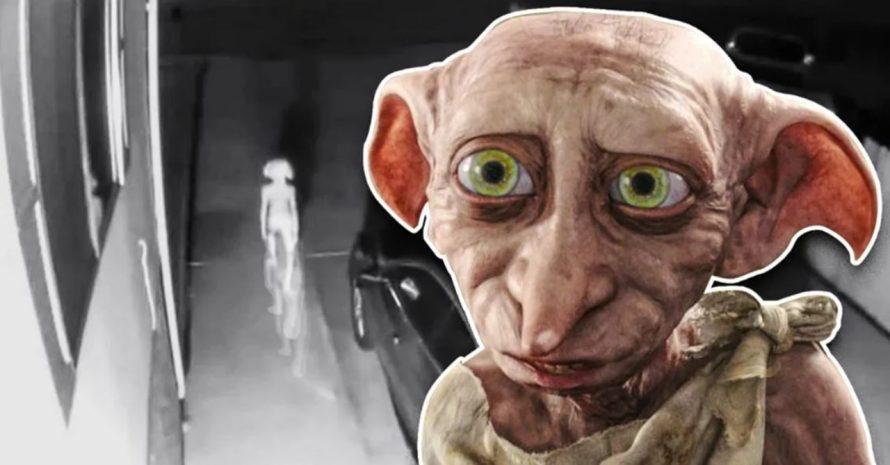 Harry Potter: internautas veem Dobby em vídeo de câmera de segurança