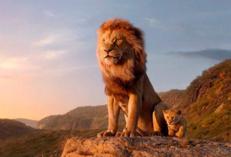 O Rei Leão: primeiras reações ao filme live-action são divulgadas