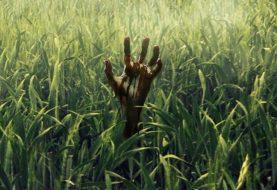 Crítica: Adaptação de Stephen King, Campo do Medo é um terror decepcionante