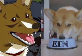 Cowboy Bebop: Netflix divulga vídeo sob perspectiva do cachorro Ein; assista