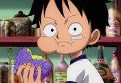 Akuma no Mi: saiba tudo sobre as famosas frutas de One Piece
