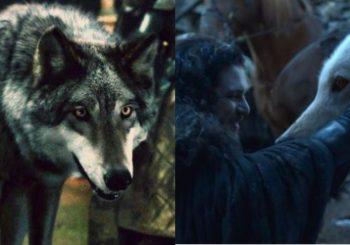 Relembre o destino dos Lobos Gigantes da Casa Stark em Game of Thrones