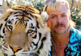Tiger King: Joe Exotic escreve carta de 257 páginas pedindo perdão a Donald Trump